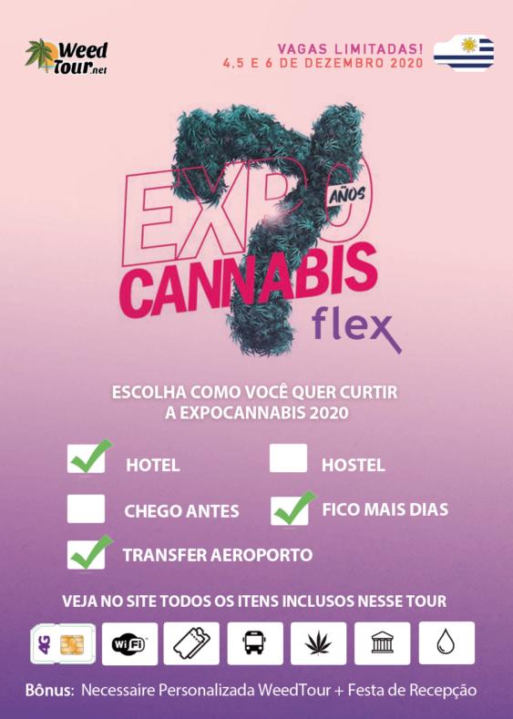 Pacote para a Expocannabis Flex (escolha entre Hotel/Hostel ou mais dias)